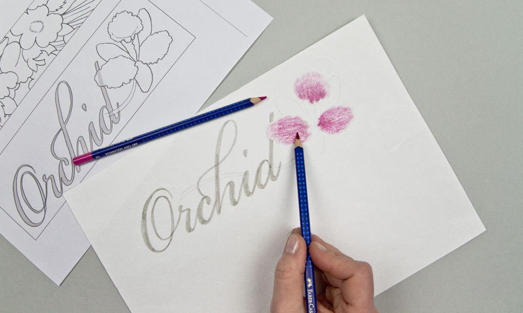 Malvorlagen für Mohnblumen und Orchideen by Faber-Castell