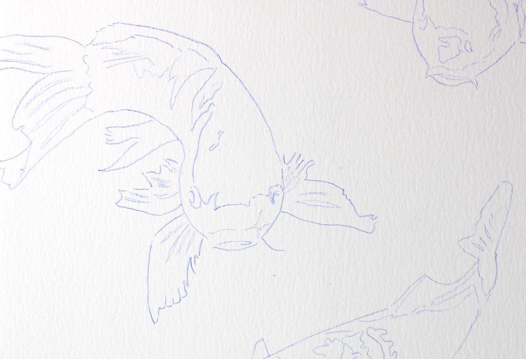 Ungewöhnlich Koi Fisch Vorlage Bilder - Beispielzusammenfassung ...