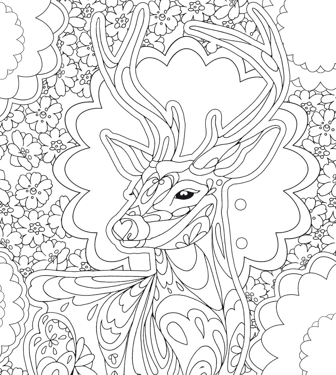 Creative Relaxation: colouring templates for beginners & advanced
