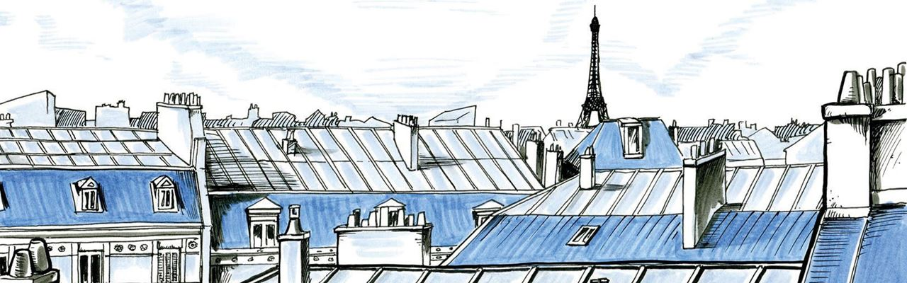 Paris from the rooftops by Christian Jallat