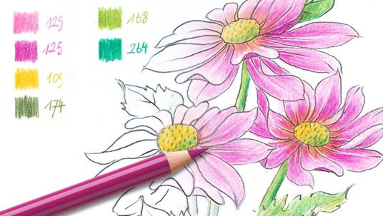 Colouring pages (advanced): Flower